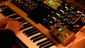 hb1 with moog